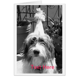 Dog Ready to Party Card
