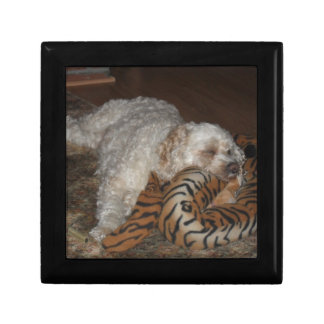 Dog relaxing on tiger striped bed gift boxes