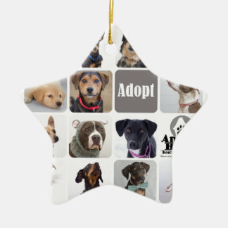 Dog Rescue Animal House Ceramic Ornament