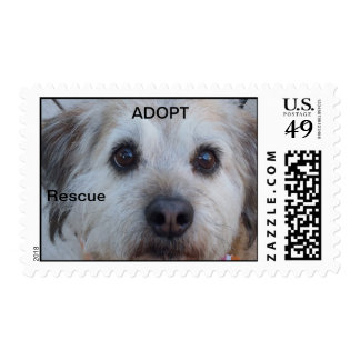 Dog Rescue stamps