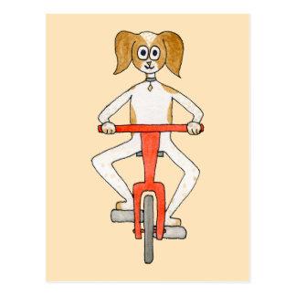 Dog Riding A Red Bike. Postcard