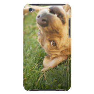 Dog rolling on back iPod Case-Mate cases