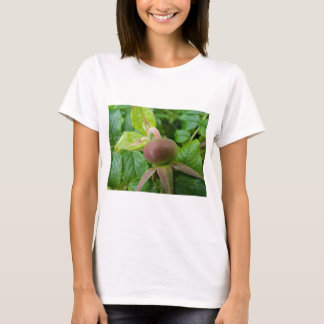 Dog Rose Hip T-Shirt