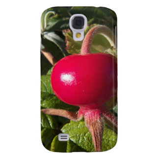 Dog Rose of the hedge HTC Vivid Covers