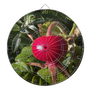 Dog Rose of the hedge Dartboard With Darts