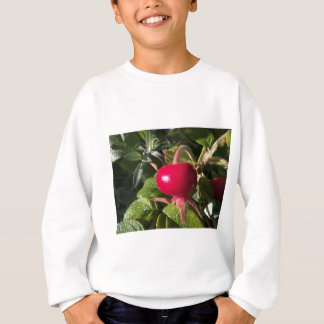 Dog Rose of the hedge Sweatshirt