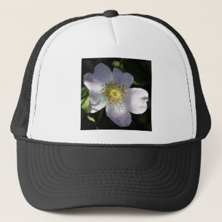 Dog Rose Trucker Hat
