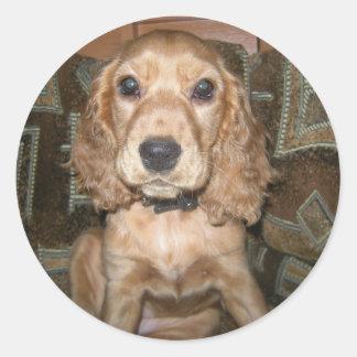 Dog Round Stickers