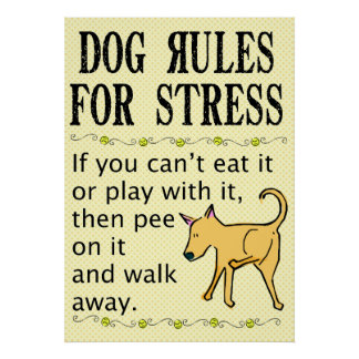Dog Rules for Stress Poster