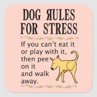 Dog Rules for Stress Square Sticker