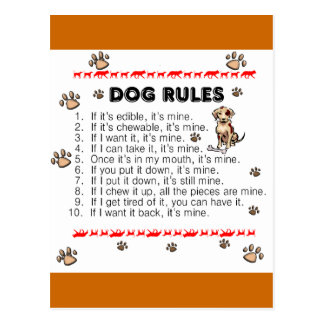 Dog Rules Postcard