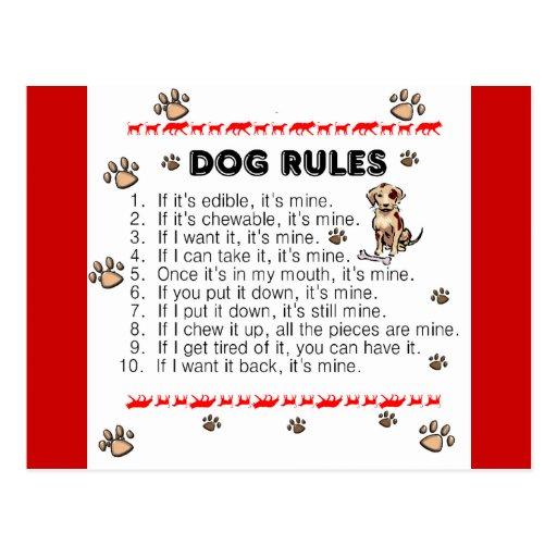 Dog Rules Postcards