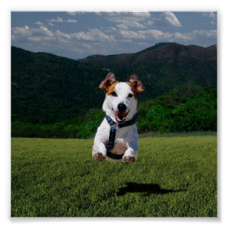 Dog Running Free - Add Your Own Text Poster