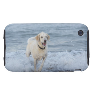 Dog running in water at beach. tough iPhone 3 cover