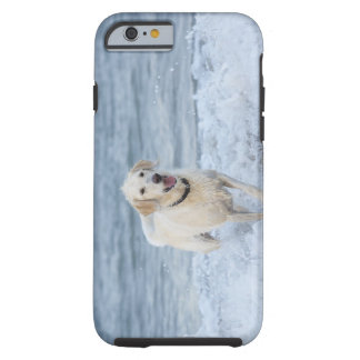 Dog running in water at beach. tough iPhone 6 case