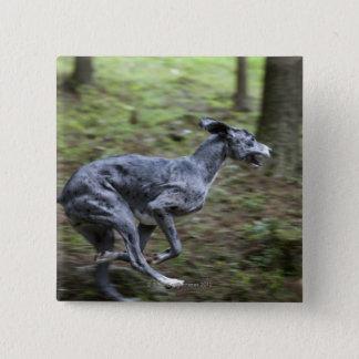 Dog running in woods pinback button