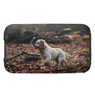 Dog running on dry leaves iPhone 3 tough cover