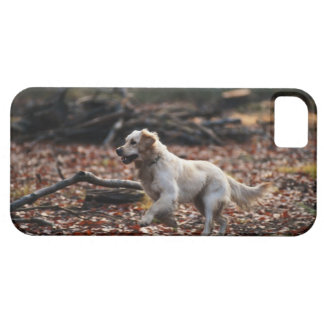 Dog running on dry leaves iPhone SE/5/5s case