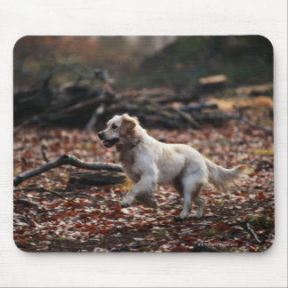 Dog running on dry leaves mouse pad