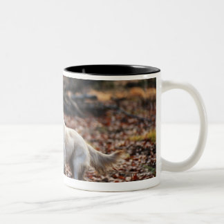 Dog running on dry leaves Two-Tone coffee mug