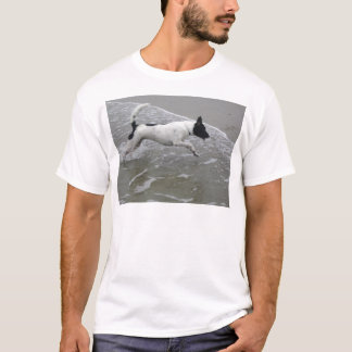 Dog Running on the Beach T-Shirt
