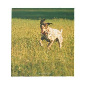 Dog running through grass scratch pad