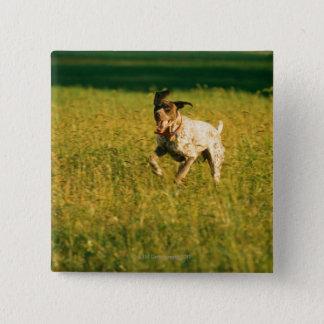 Dog running through grass pinback button