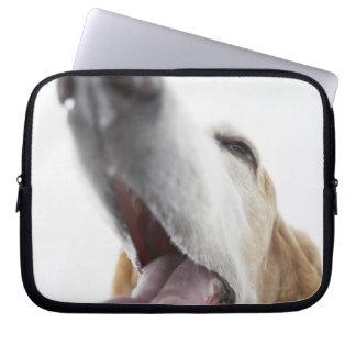 Dog 's nose,close-up laptop sleeve