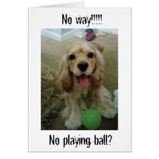 DOG SAYS NO WAY NO PLAY-40TH BIRTHDAY HUMOR CARD