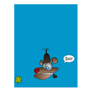 Dog Sees Ball Post Card