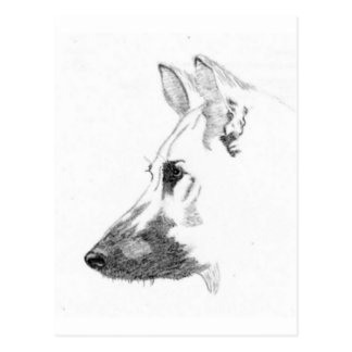 Dog Shepherd Post Cards