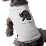 "Dog Shirt I've got a cat scared"""