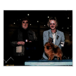 Dog-Show-001 Poster
