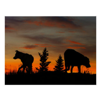 Dog Silhouette at Sunset Poster