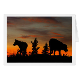 Dog Silhouette at Sunset; Thank You Greeting Card