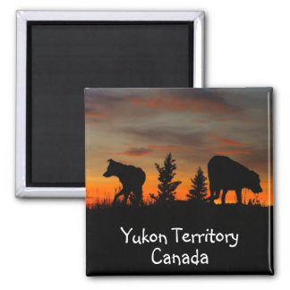 Dog Silhouette at Sunset; Yukon Territory, Canada 2 Inch Square Magnet