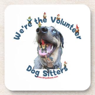 Dog Sitter Gnomes Coaster