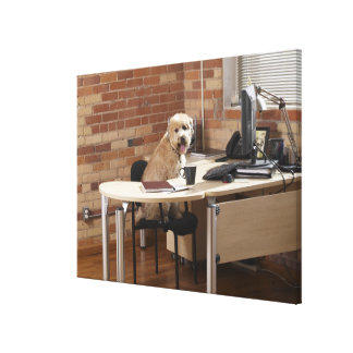 Dog Sitting at Desk Canvas Print