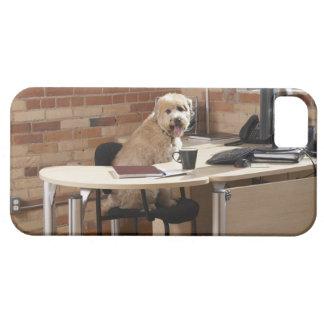Dog Sitting at Desk iPhone SE/5/5s Case