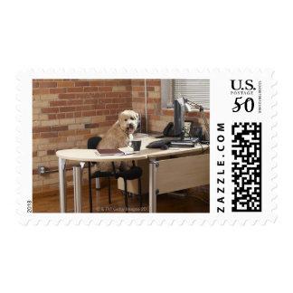 Dog Sitting at Desk Postage