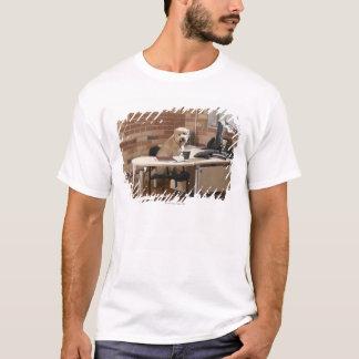 Dog Sitting at Desk T-Shirt