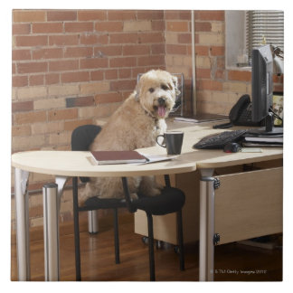 Dog Sitting at Desk Tile