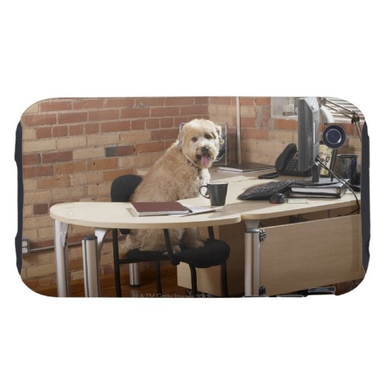 Dog Sitting at Desk Tough iPhone 3 Case