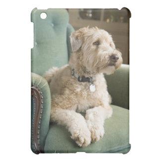 Dog sitting in armchair iPad mini covers