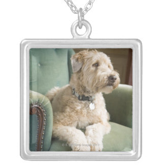Dog sitting in armchair silver plated necklace