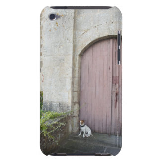 Dog sitting in front of closed doors barely there iPod cover