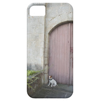 Dog sitting in front of closed doors iPhone 5 case