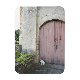 Dog sitting in front of closed doors rectangular magnets