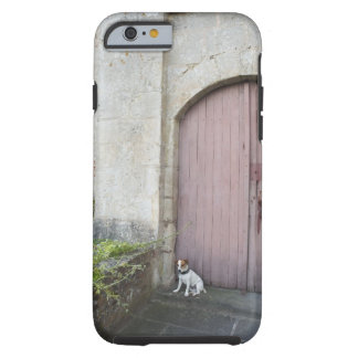 Dog sitting in front of closed doors tough iPhone 6 case