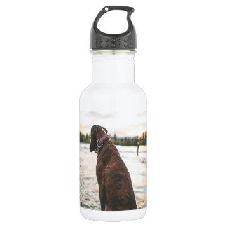 Dog Sitting on a Dock 18oz Water Bottle